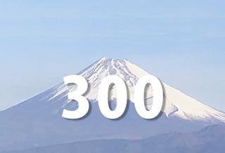 300_8.jpg
